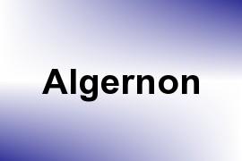 Algernon name image