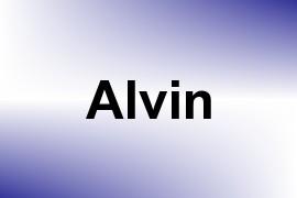 Alvin name image