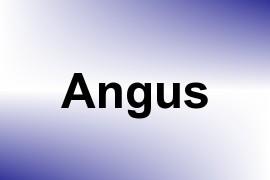 Angus name image