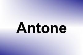 Antone name image