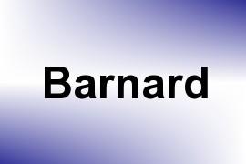 Barnard name image