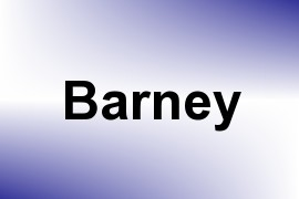 Barney name image