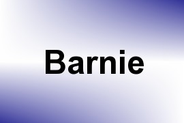 Barnie name image