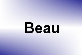 Beau name image