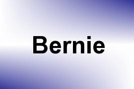 Bernie name image