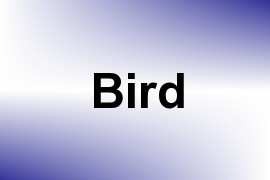 Bird name image