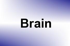 Brain name image