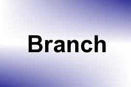 Branch name image