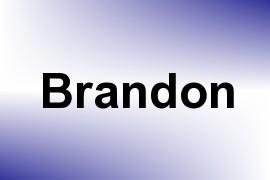 Brandon name image