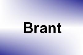Brant name image