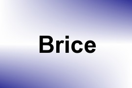 Brice name image