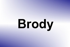 Brody name image