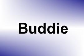 Buddie name image