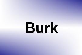 Burk name image