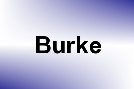 Burke name image