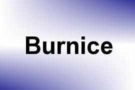 Burnice name image