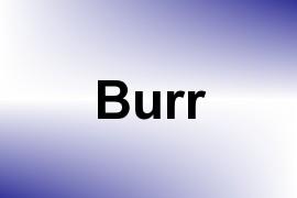 Burr name image