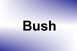 Bush name image