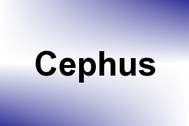Cephus name image