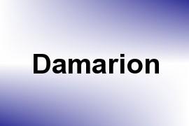 Damarion name image