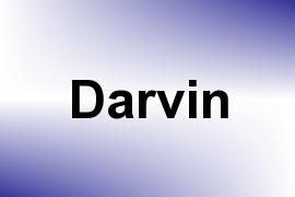 Darvin name image
