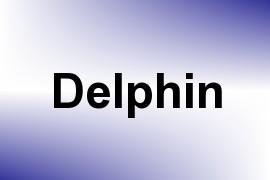 Delphin name image