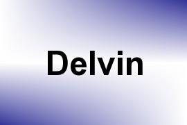 Delvin name image