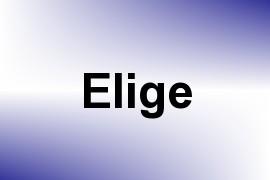 Elige name image