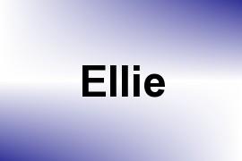 Ellie name image