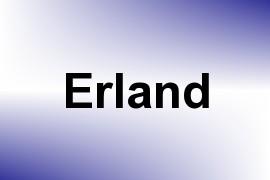 Erland name image