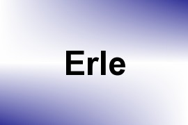 Erle name image