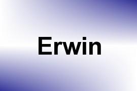 Erwin name image