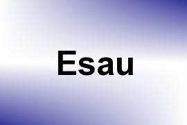 Esau name image