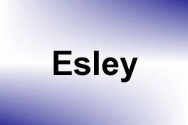 Esley name image