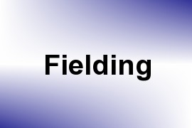 Fielding name image
