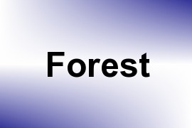 Forest name image