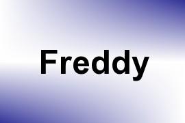 Freddy name image