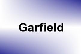 Garfield name image