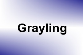 Grayling - Given Name Information and Usage Statistics