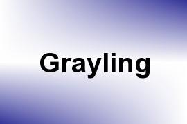 Grayling name image