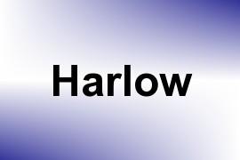 Harlow name image
