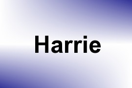 Harrie name image