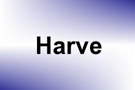 Harve name image