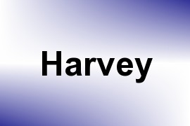 Harvey name image