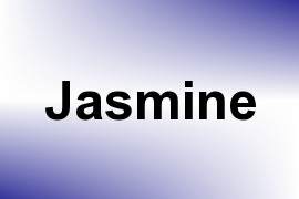 Jasmine name image