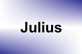 Julius name image