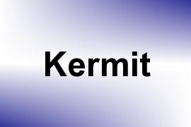 Kermit name image