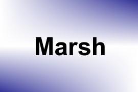 Marsh name image