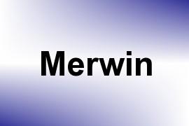 Merwin name image