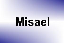 Misael name image